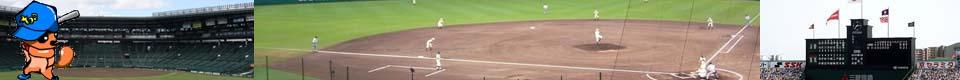 モモンガネット野球